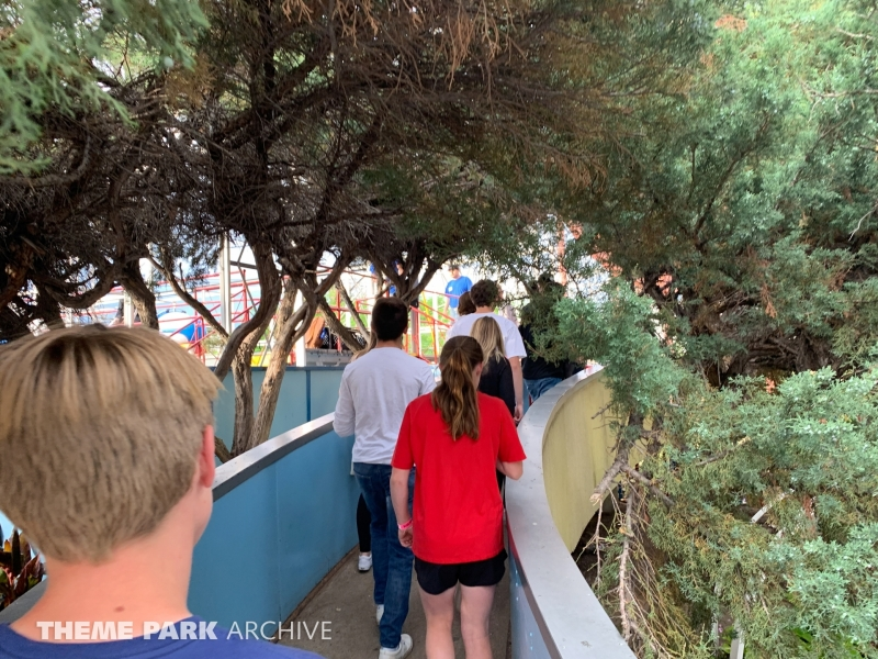 Wild Chipmunk at Lakeside Amusement Park
