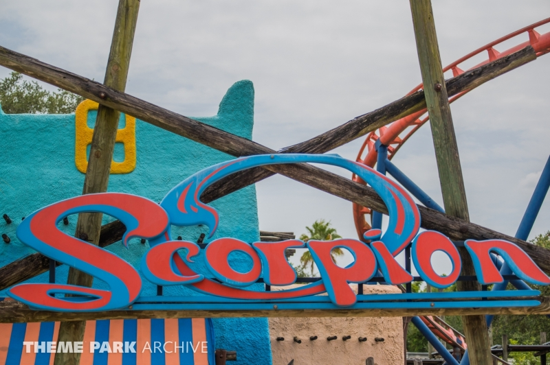 Scorpion at Busch Gardens Tampa