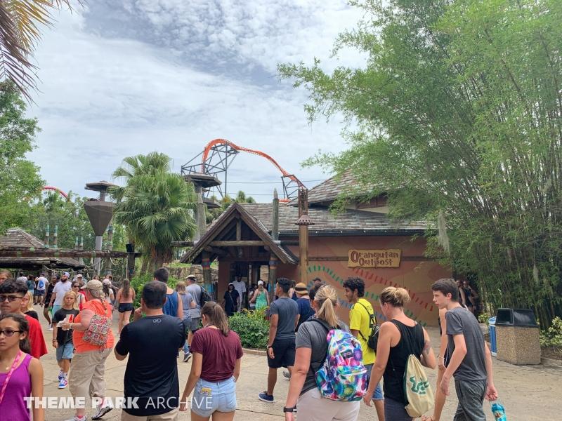 Jungala at Busch Gardens Tampa