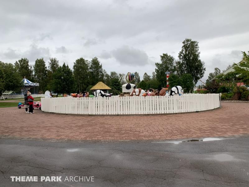 Rodeo at Skara Sommarland
