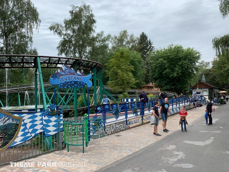 Blauer Enzian at Freizeit Land Geiselwind