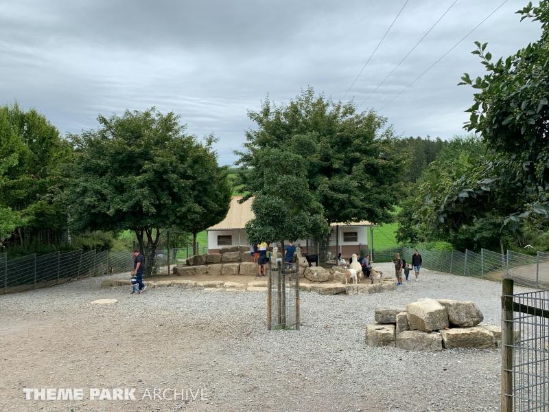 Streichelzoo at Schwaben Park