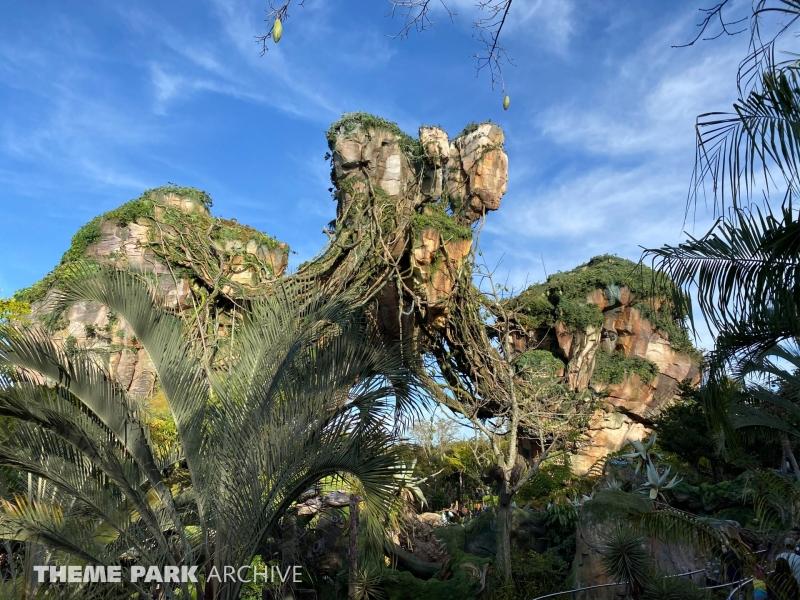Pandora: The World of Avatar at Disney's Animal Kingdom