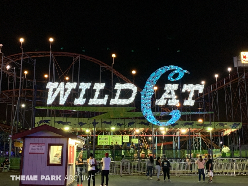 Wild Cat at Washington State Fair