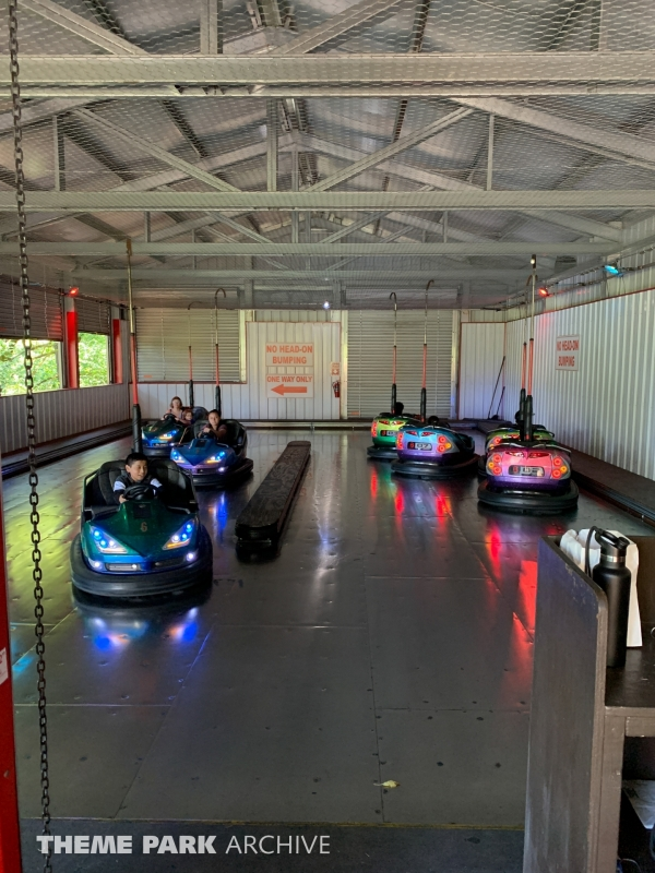 Speedway Bumper Cars at Enchanted Forest