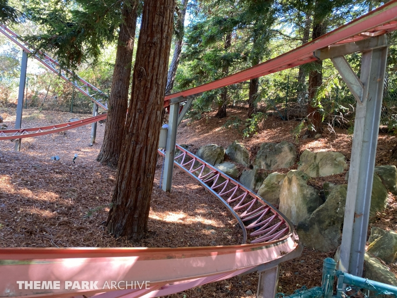 Timber Twister at Gilroy Gardens