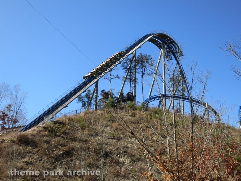 Wild Eagle at Dollywood