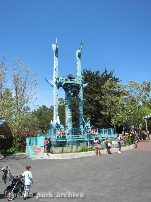 Hammerhead Shark at Six Flags Discovery Kingdom