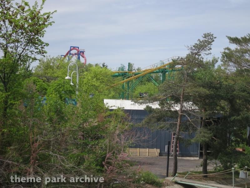 Ragin' Cajun at Six Flags Great America