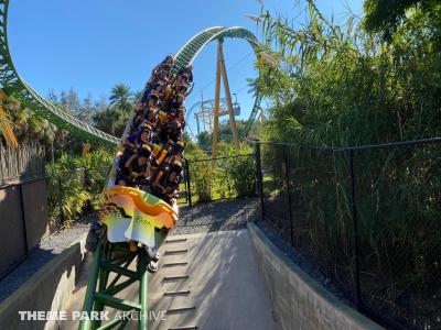 We check out the construction of Iron Gwazi